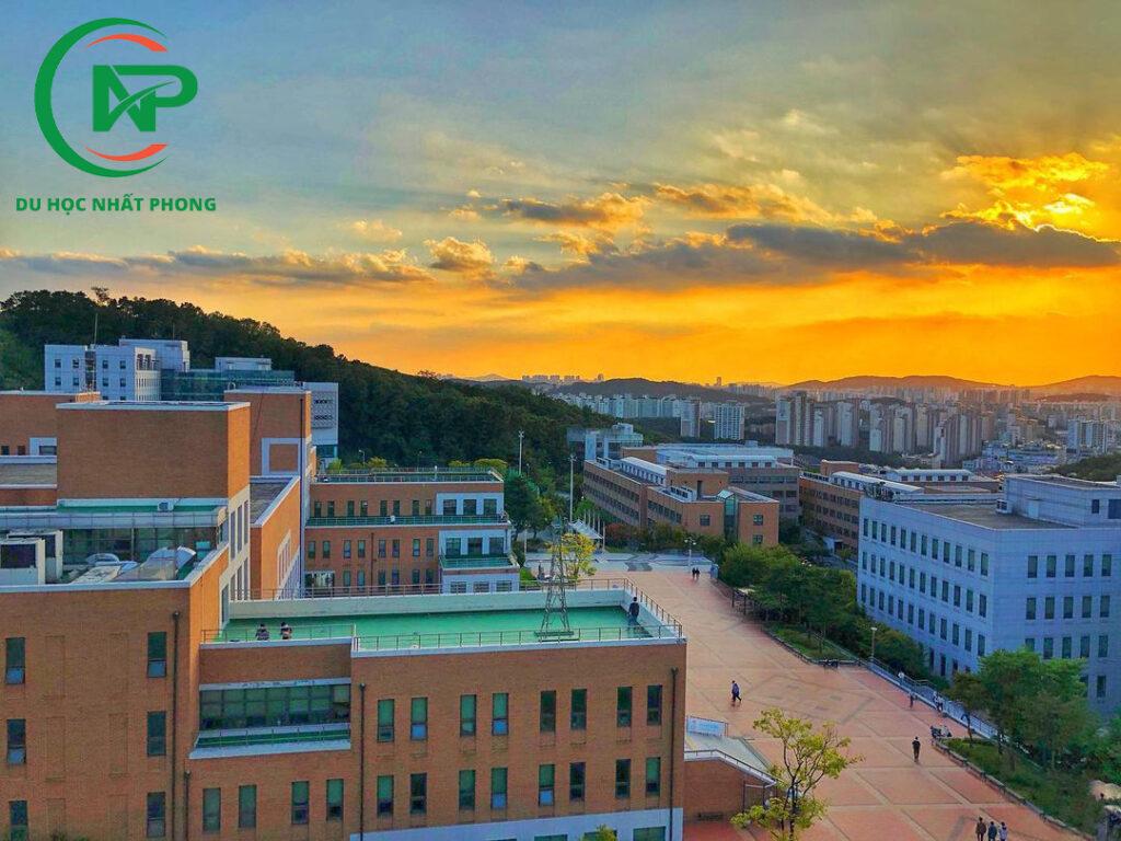 Sân trường đại học Dankook