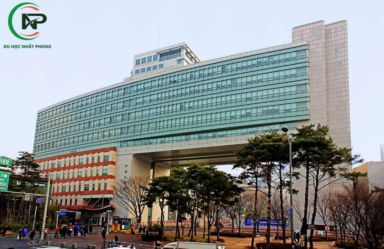 Hongik University Seoul 1