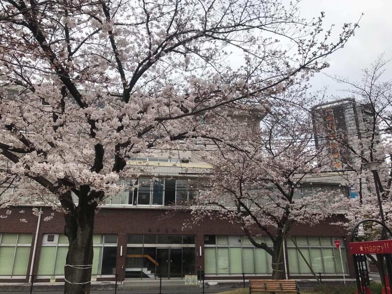 trường quốc tế Fukuoka