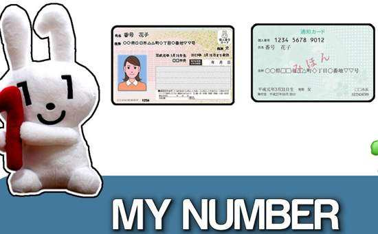 the my number