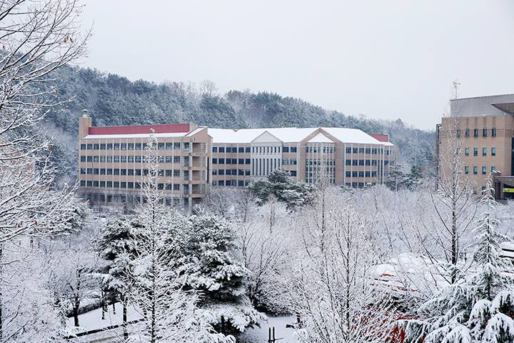 Khung cảnh trường ĐH MOKWON và mùa đông