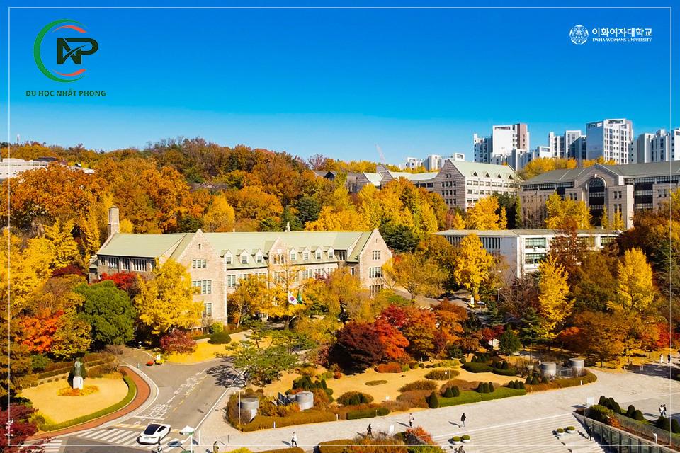 Giới thiệu trường Đại học Nữ sinh Ewha