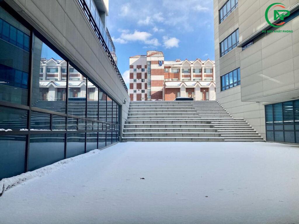 Giới thiệu trường đại học Hannam