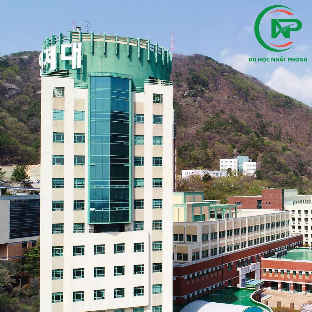 Giới thiệu trường đại học Inje