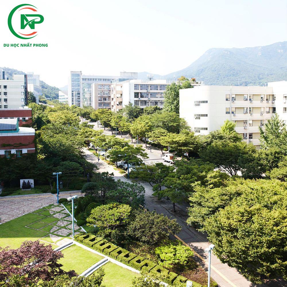 Khuôn viên trường đại học Inje