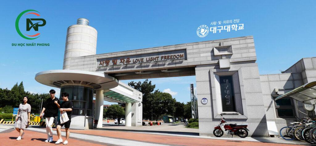 Giới thiệu trường đại học Daegu