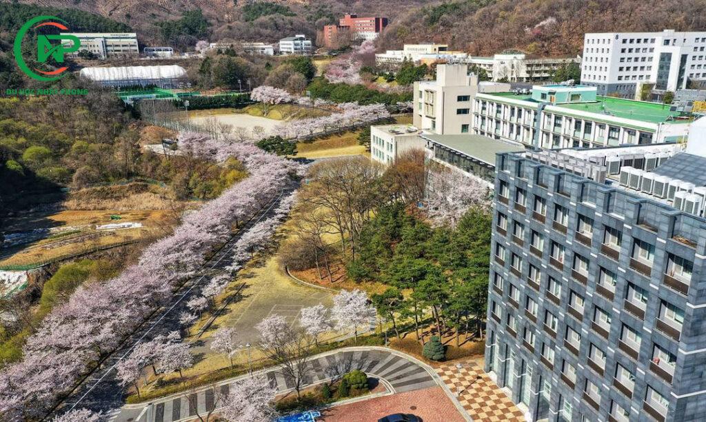Giới thiệu trường đại học Myongji