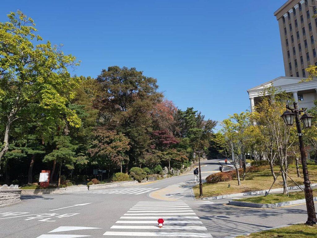 đường kyung hee