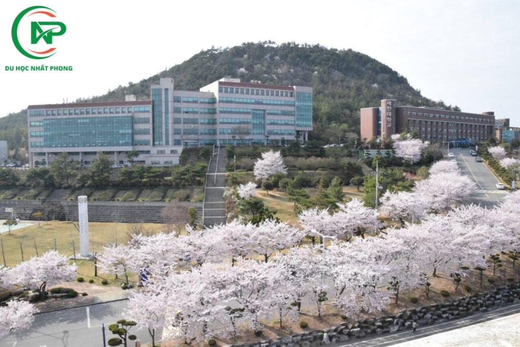Khuôn viên trường đại học Sehan