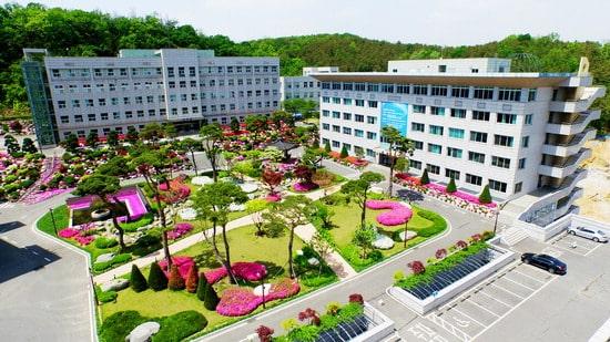 toàn trường seojeong