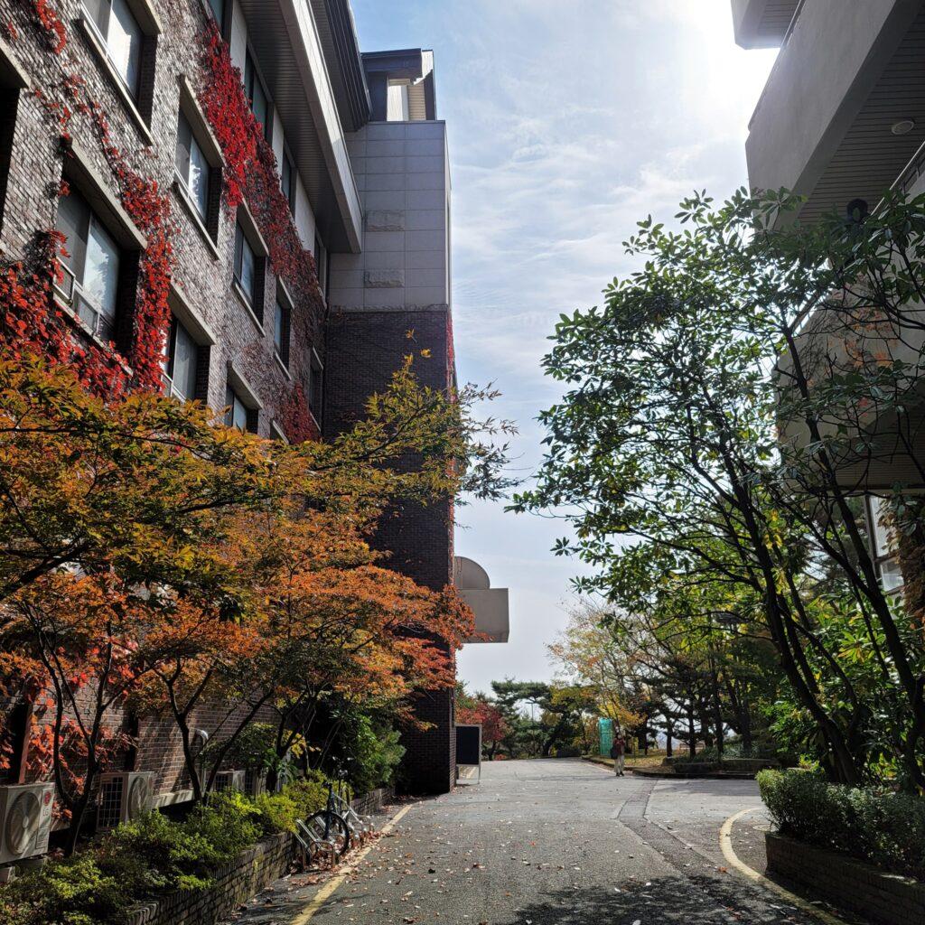 cơ sở vật chất của trường đại học honam