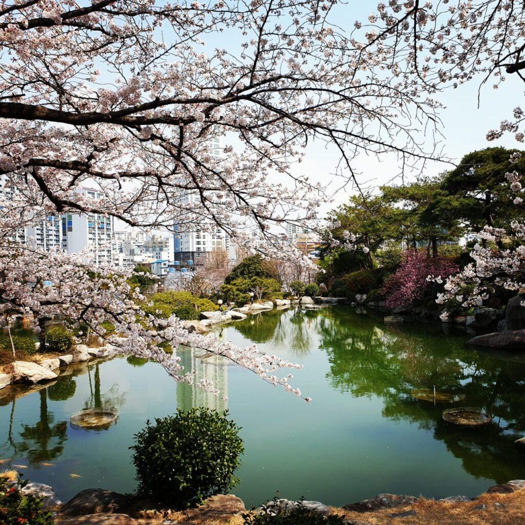 khuôn viên trường đại học kyungnam