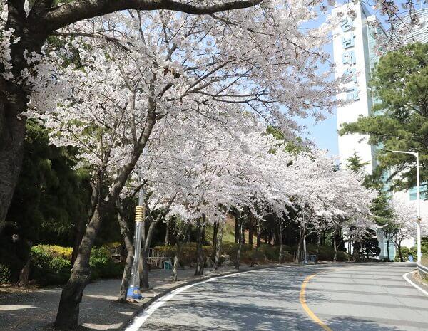 đường tại kangnam