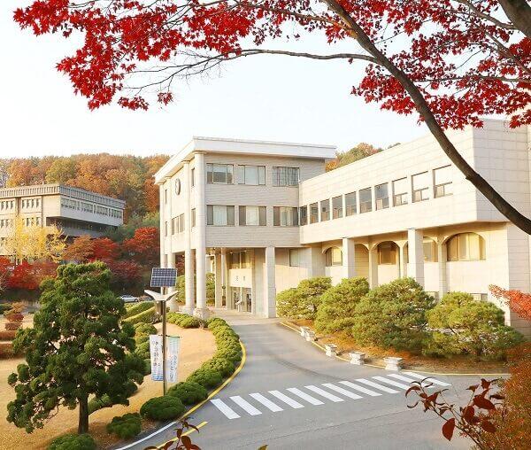 trường kangnam