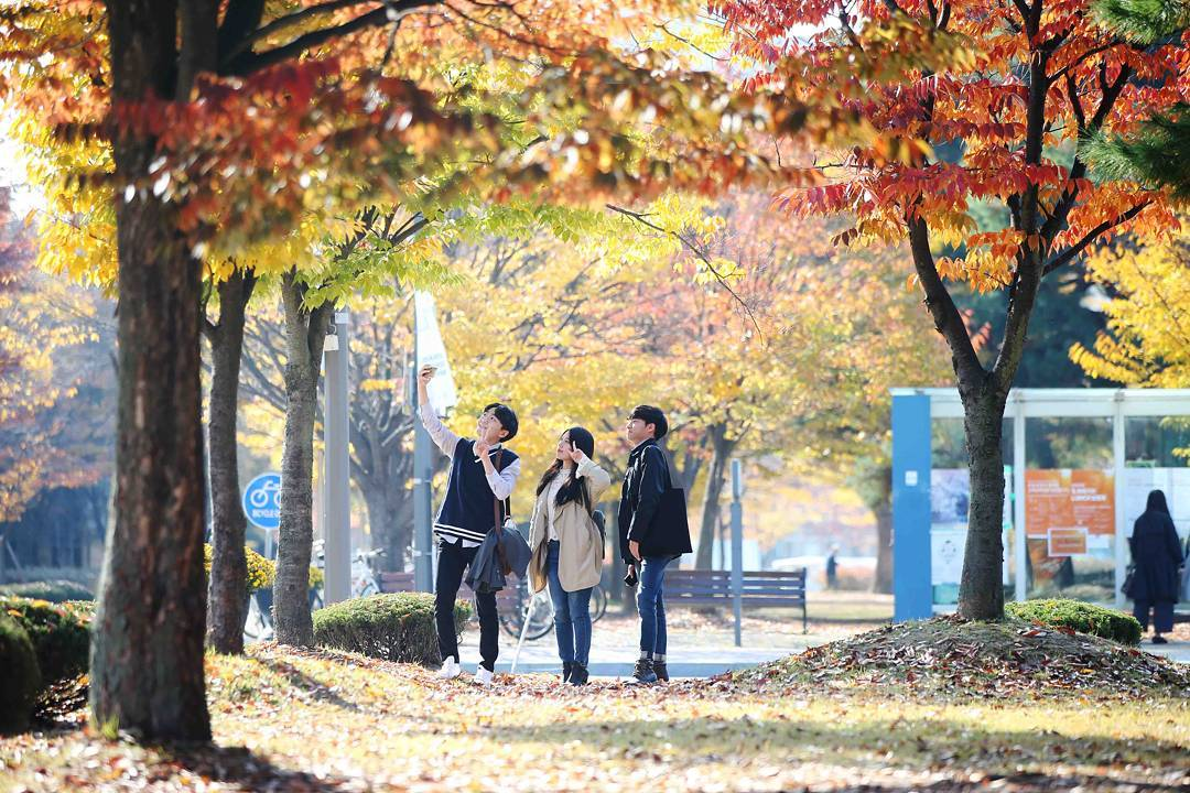 Sinh viên học viện công nghệ tiên tiến Hàn Quốc KAIST